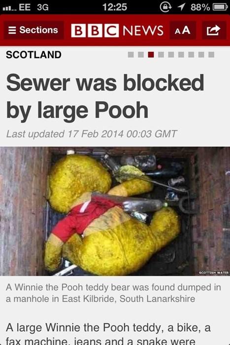 Large pooh